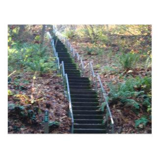Stairway to Heaven Postcard