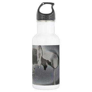 Stalactites 532 Ml Water Bottle