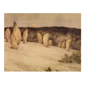 Stalks of Grain in Moonlight Postcard