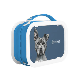 Stalky Pit Bull Dog Drawing Lunch Box