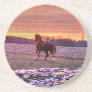 Stallion Running Home at Sunset on Ranch Beverage Coasters