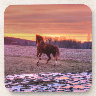 Stallion Running Home at Sunset on Ranch Drink Coaster
