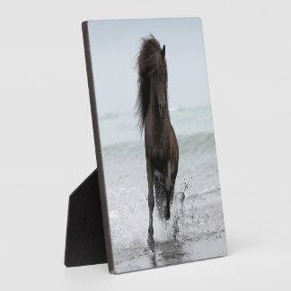 Stallion Running On Beach | North Atlantic Plaque