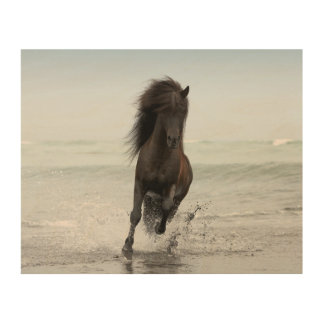 Stallion Running On Beach | North Atlantic Wood Canvases