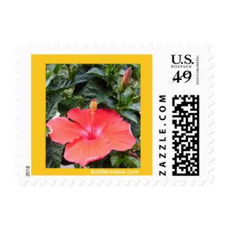 """Stamp - """"Hibiscus"""""""