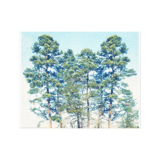 Stand Of Trees Stretched Canvas Print