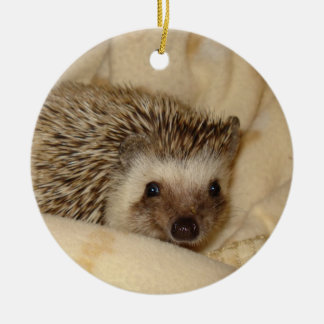 Standard hedgehog face ornament
