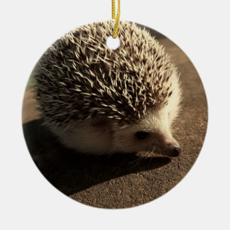 Standard hedgehog ornament