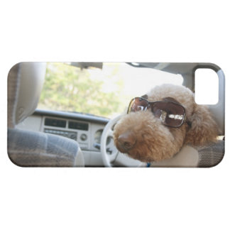 standard poodle 3 case for the iPhone 5