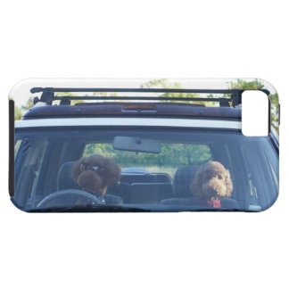 standard poodle 4 case for the iPhone 5