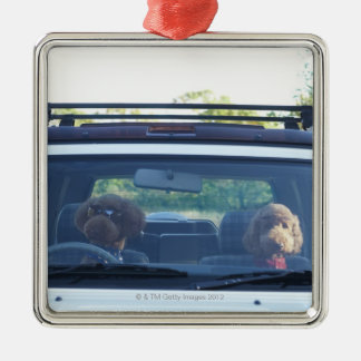 standard poodle 4 Silver-Colored square decoration