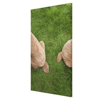 standard poodle 5 canvas print