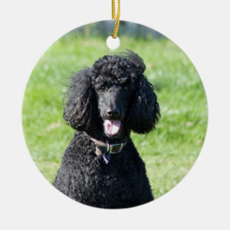 Standard Poodle dog black beautiful photo portrait Christmas Ornament