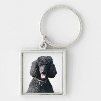 Standard Poodle dog black beautiful photo portrait Key Ring