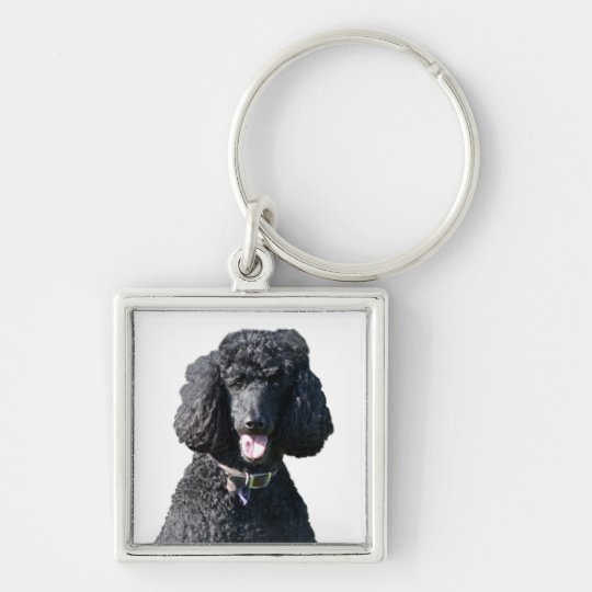 Standard Poodle dog black beautiful photo portrait Silver-Colored Square Key Ring