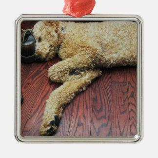 Standard Poodle Sleeping on Floor Christmas Ornament
