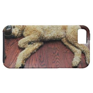 Standard Poodle Sleeping on Floor iPhone 5 Cover