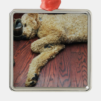 Standard Poodle Sleeping on Floor Silver-Colored Square Decoration