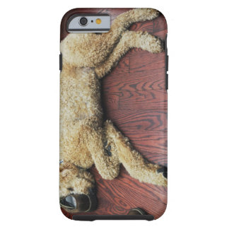 Standard Poodle Sleeping on Floor Tough iPhone 6 Case