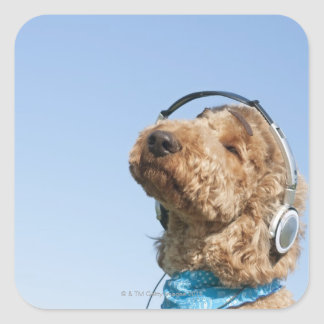 Standard Poodle Square Sticker