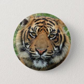 Standard tiger: 5.7 cm round Button