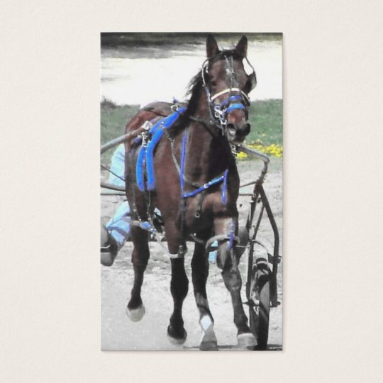 Standardbred Business Card