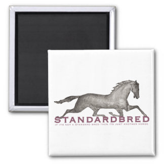 Standardbred Square Magnet