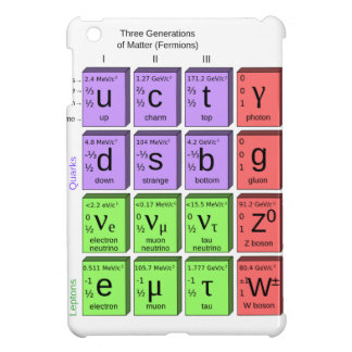 Standart model of elementary particles iPad mini cover