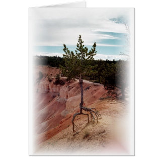 Standing Alone at Bryce Canyon Card