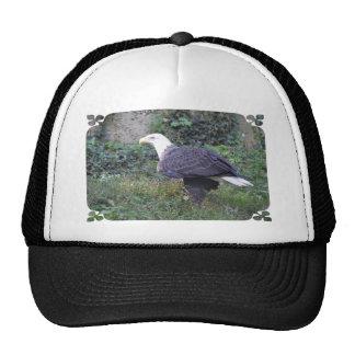 Standing American Bald Eagle Cap