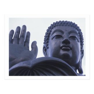 Standing Buddha ~ Thailand Temple Photo Postcard