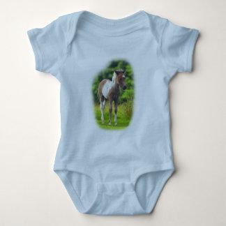 Standing Dartmoor Pony Foal infant creeper