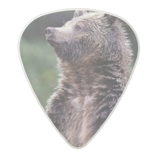 Standing Grizzly Bear Acetal Guitar Pick