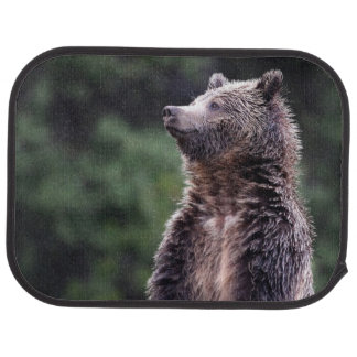 Standing Grizzly Bear Car Mat