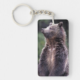 Standing Grizzly Bear Double-Sided Rectangular Acrylic Key Ring
