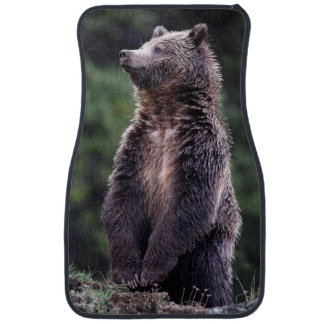 Standing Grizzly Bear Floor Mat