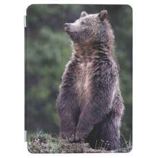 Standing Grizzly Bear iPad Air Cover