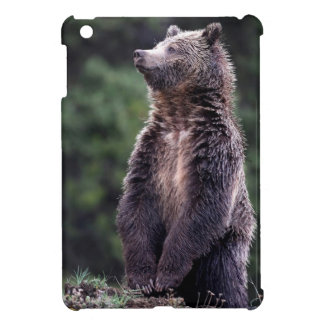 Standing Grizzly Bear iPad Mini Cover