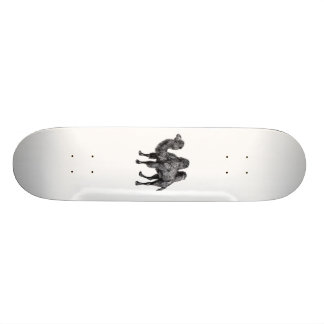 Standing two humped camel vintage drawing skate decks