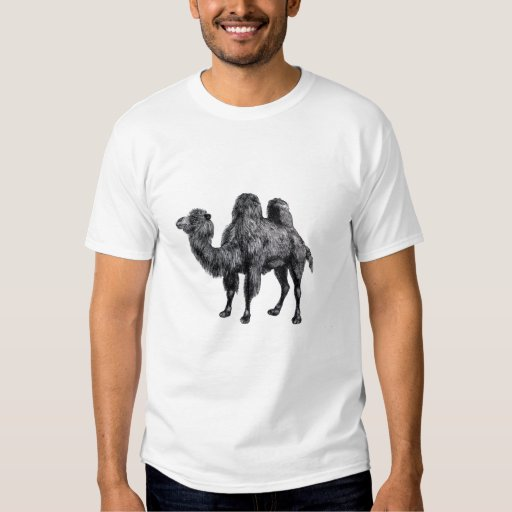 Standing two humped camel vintage drawing tees
