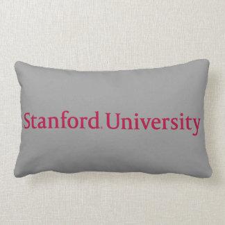 Stanford University Lumbar Cushion