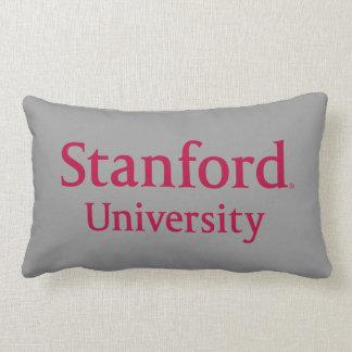 Stanford University Stacked Lumbar Cushion