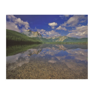 Stanley Lake in the Sawtooth Mountains of Idaho Wood Wall Art