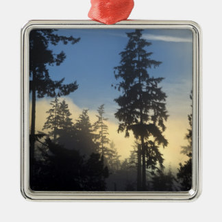 Stanley Park, woods, marine layer fog rolling in Silver-Colored Square Decoration