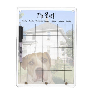 Stan's I'm Busy Dry Erase Board