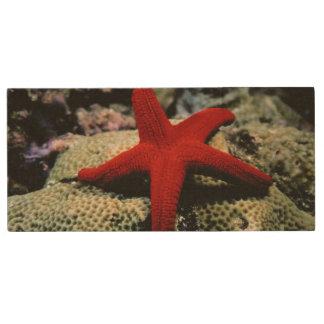 Star Fish | Red Sea Wood USB Flash Drive