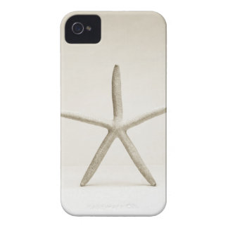 Star fish shell iPhone 4 covers