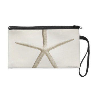 Star fish shell wristlet
