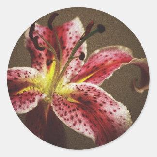 Star Gazer Lily Round Stickers