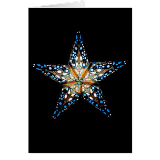 Star LIght #2 Card